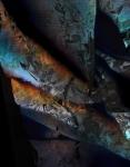 Cligne musette color 1920 72 dpi
